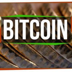 Bitcoin: How Cryptocurrencies Work