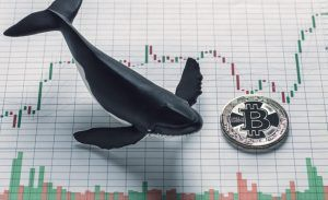 Conceptual representation of Bitcoin Whale holder presented as single coing placed next to whale figure on volatile price value chart