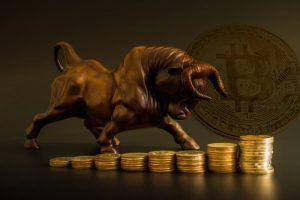 Bitcoin bull.