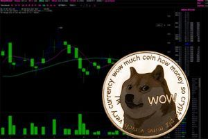 An image featuring a Dogecoin with statistics in the background