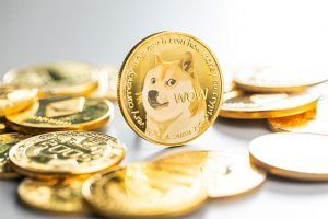 An image featuring multiple crypto coins with the Dogecoin in front of them